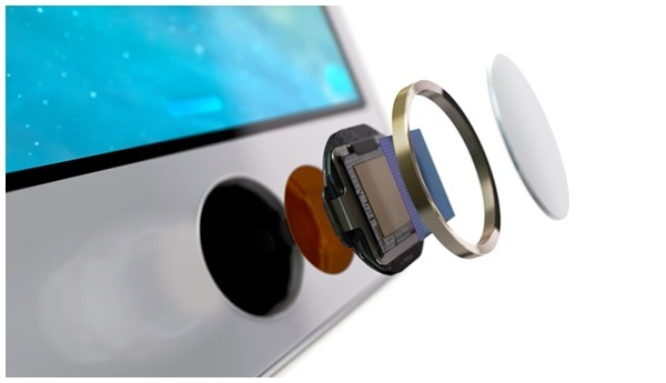 Apple Touch ID Sensor